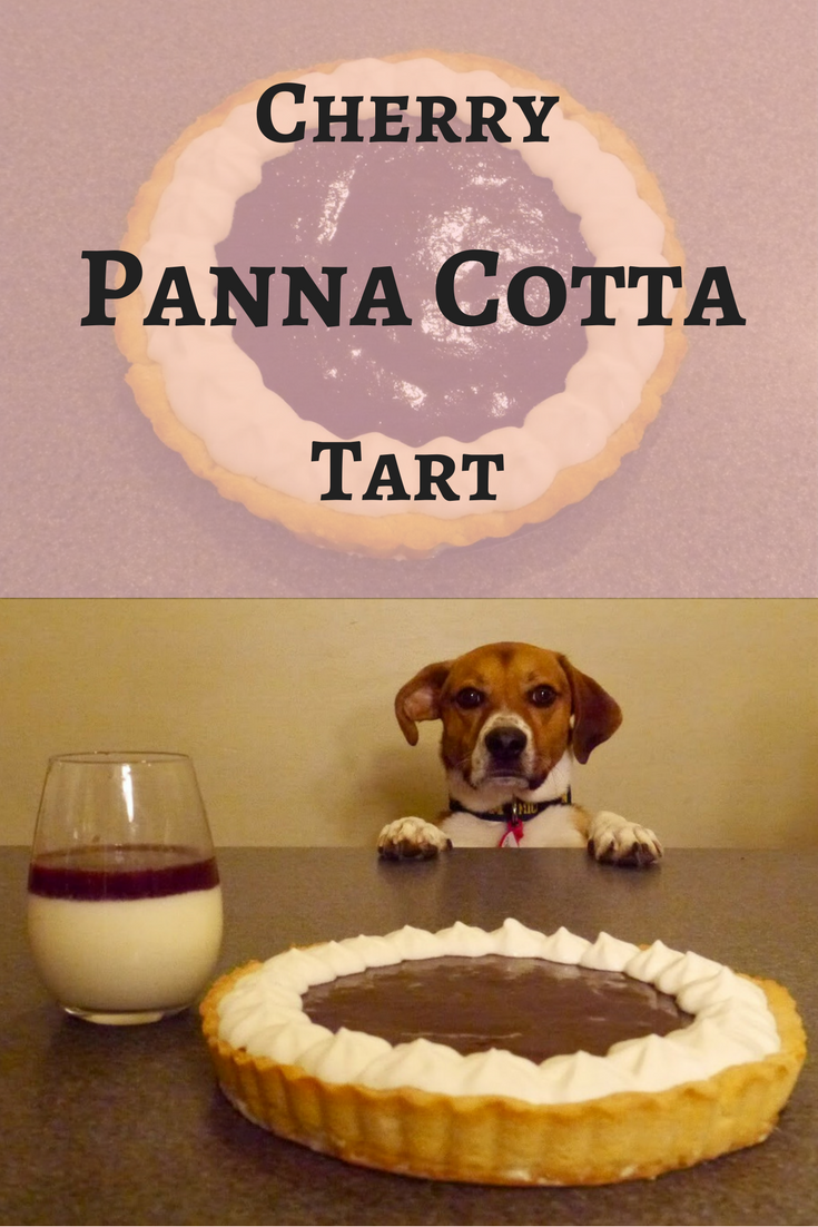 cherry panna cotta tart pin