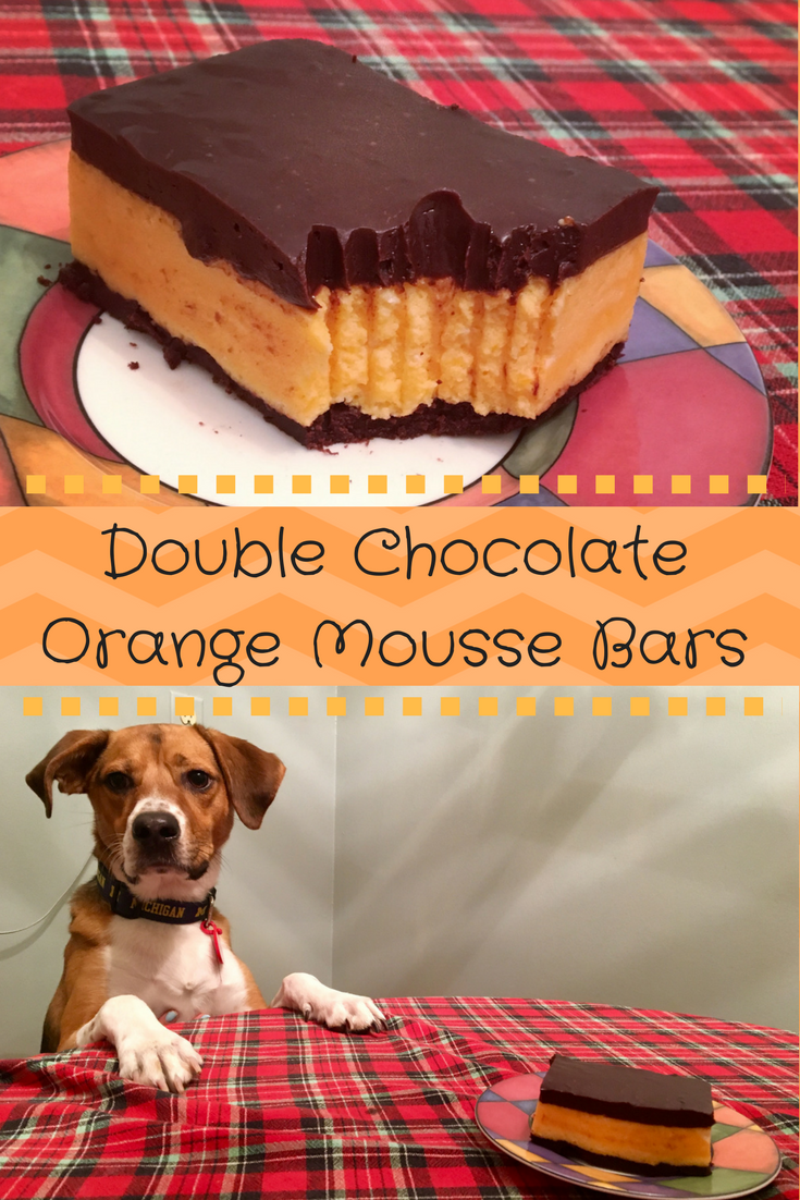 pin for double chocolate orange mousse bars