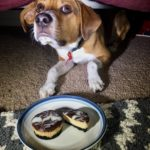 Mini Oreo and Peanut Butter Cheesecake