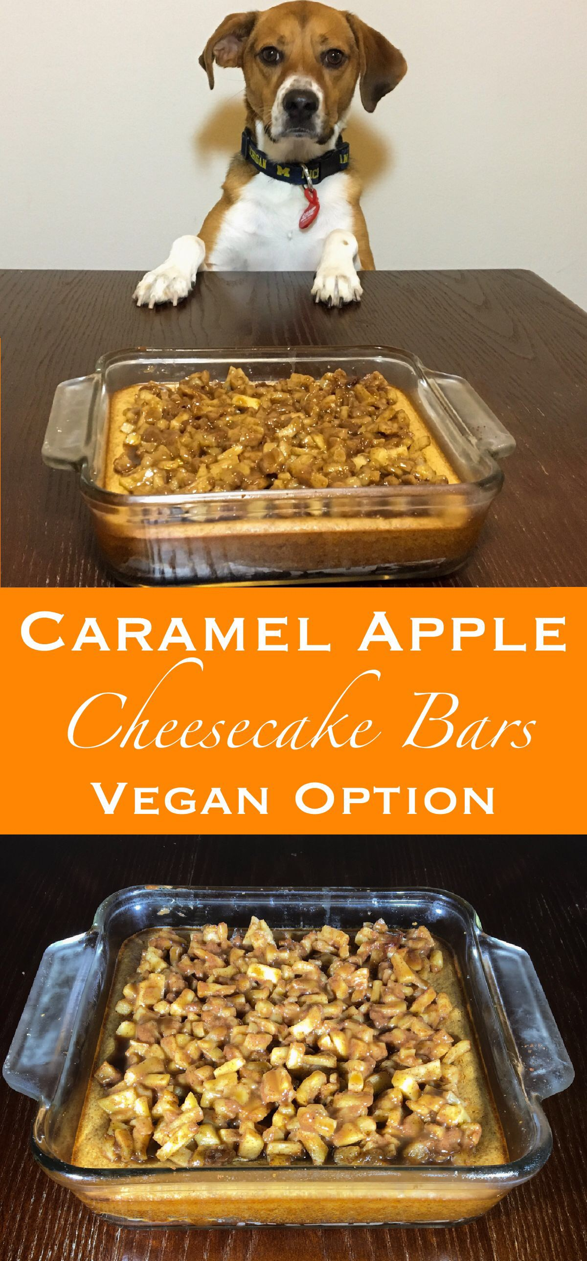 pin for caramel apple cheesecake bars