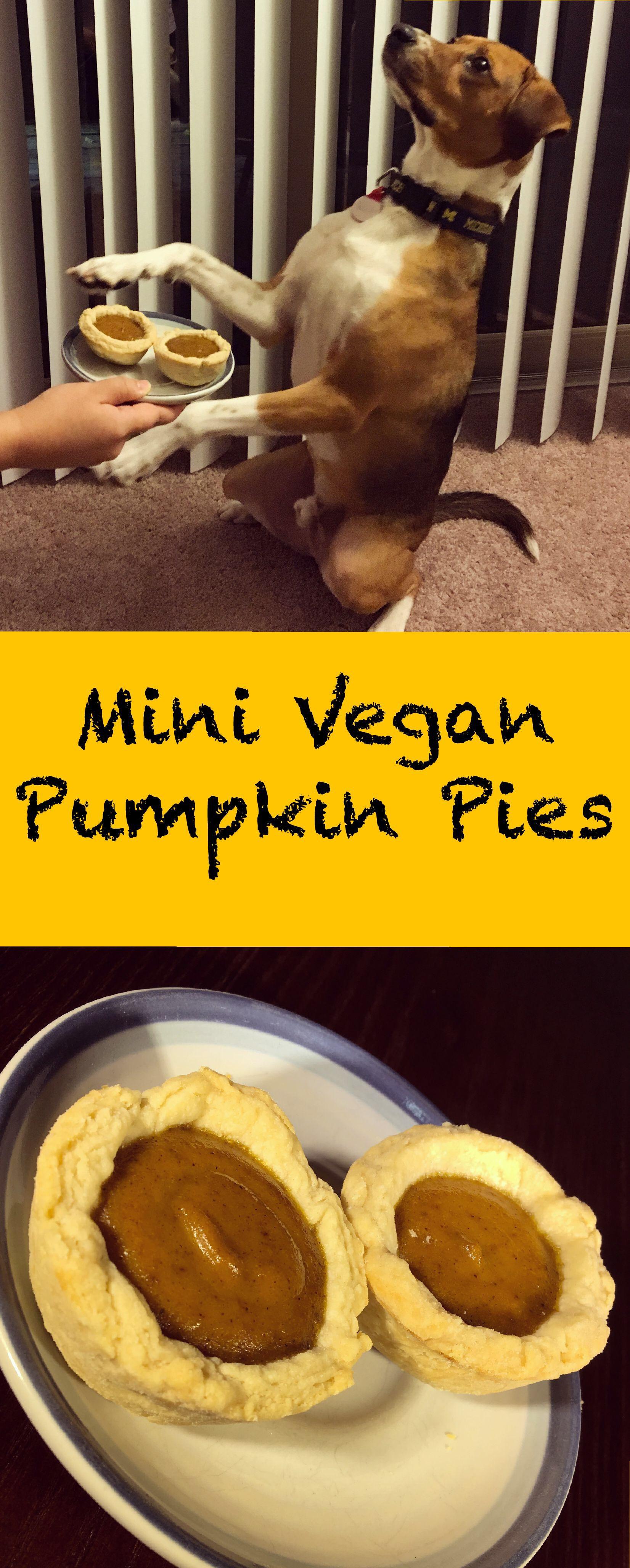 pin for mini vegan pumpkin pies